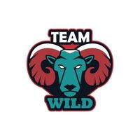 rams head animal emblem icon with team wild lettering vector