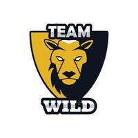lion in shield head animal emblem icon with team wild lettering vector