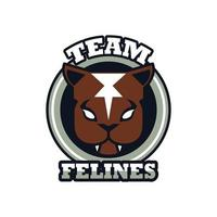 panther head animal emblem icon with team felines lettering vector