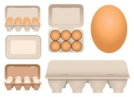 Chicken eggs in carton vector design illustration set isolated on white background