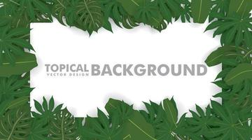 Frame made of fresh green tropical leaves on white background. Space for design or text. vector