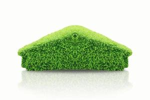 Green topiary bush in the form of house on white background photo