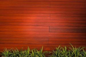 fondos de textura de madera con plantas foto