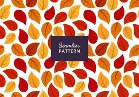 Autumn leaf seamless pattern design, beautiful autumn leaf background vector