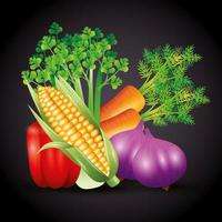 fresh organic vegetables, healthy food, healthy lifestyle or diet on black background vector
