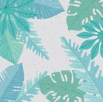 Tropical foliage background vector