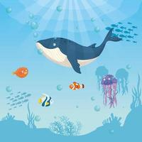 blue whale and fish in the ocean, sea world dweller, cute underwater creature vector