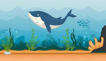 blue whale in the ocean, sea world dweller, cute underwater creature vector
