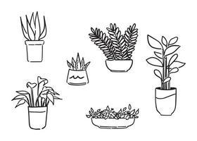conjunto de plantas ornamentales, concepto de diseño de interiores de sala de estar, icono de contorno de doodle. Ilustración de vector de estilo dibujado a mano.