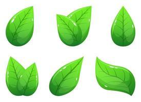 Realistic leaf vector design illustration set isolated on white background