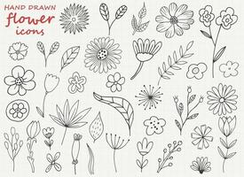 Hand drawn flower vector design illustration isolated on background