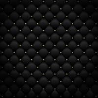 Black leather pattern with golden metal. Luxury background. Vector illustration