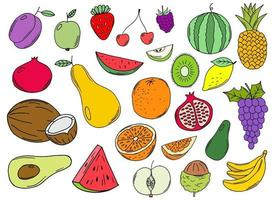Hand drawn fruits collection vector design illustration isolated on background