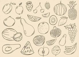 Ilustración de diseño de vector de colección de frutas dibujadas a mano aislado sobre fondo