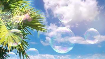 cinemagraph com bolhas de sabão no céu e palmeiras