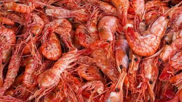 Close-up of Red Cooked Prawns video
