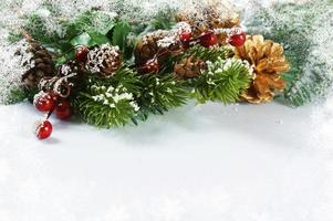 Christmas decorations with snowy border