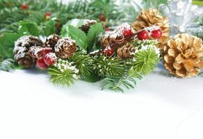 Christmas background with berries and pine cones