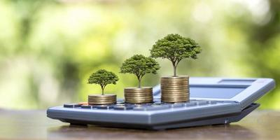 Planting trees on money pile and calculator financial accounting ideas and save money