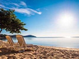 Empty sunbathing beds on the tropical beach photo