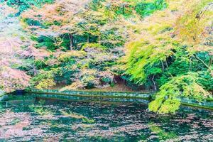 Autumn season in Japan photo