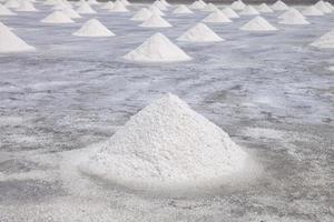 campo de la granja de sal foto