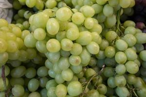 Group of green grapes photo