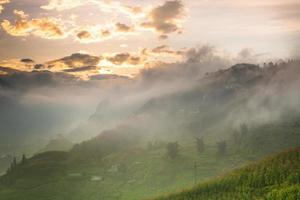 Rice terrace on hill at sunrise