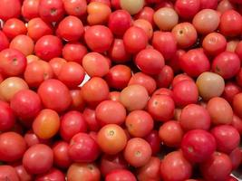 Bunch of tomatoes photo