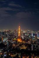 Tokyo, Japan, 2020 - Tokyo Tower lit at night