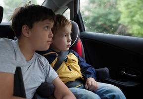 Boys looking out a car window