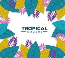 Fondo de follaje tropical con hojas de colores