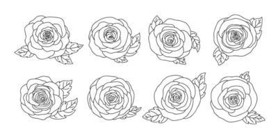 Diseño de flores color de rosa aislado en la ilustración de vector de fondo blanco