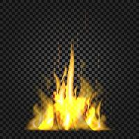 Realistic fire flames on black background vector