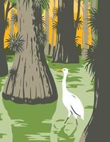 Everglades National Park with Egret in Mangrove and Cypress Trees WPA Poster Art vector