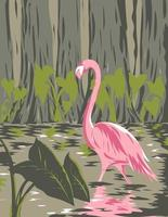 Flamingo in the Everglades National Park Located in Florida United States of America WPA Poster Art vector