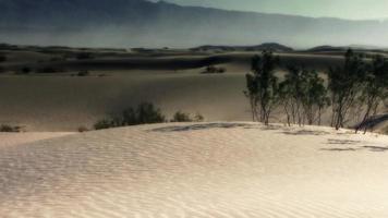 um vento suave sopra sobre as dunas do deserto