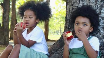Cute Black Boy And Girl Eating An Apple