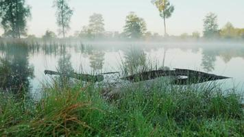 Morning drops on grass at a river covered in fog