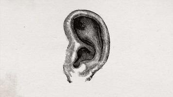 Resumo da velha ciência desenho animado de fundo de orelha humana