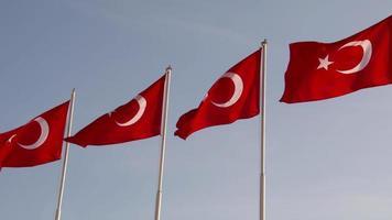 bandera nacional turca roja y blanca video