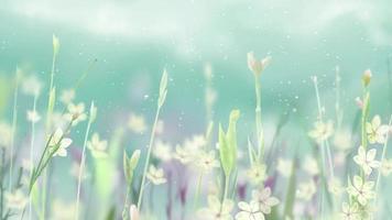 fond de fleuriste au ralenti