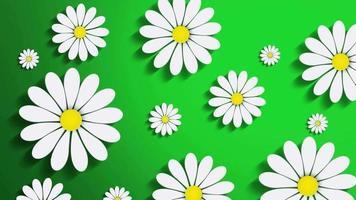 fundo de flores em movimento video