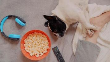 Top View of A Guy Eating Popcorn in Bed with His Dog