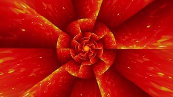 bucle caleidoscopio patrón figura en movimiento como flor roja