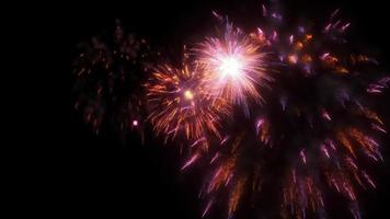 Firework animation Multicolored pyrotechnic light show festive holiday