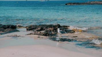 Balearic Island Formentera Rocky Paradise Beach video