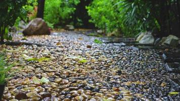 lloviendo en el camino de piedra