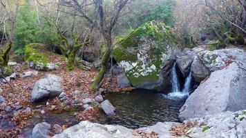 naturaleza salvaje y cascada en las rocas video
