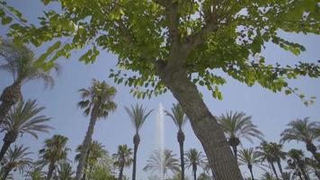 Fountain reveal shot through palm trees in Spain, Ibiza, San Antonio